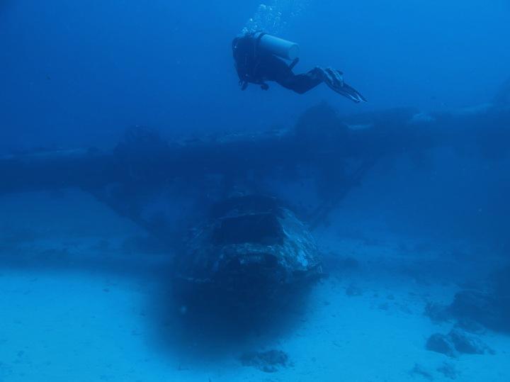 Dive Journal: Biak, Papua – Catatan Perjalanan Alam Bawah Laut di UtaraPapua